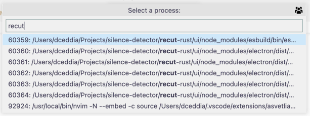 Select a process to attach VSCode's debugger to